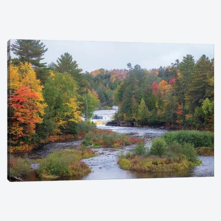 Tahquamenon Autumn I Canvas Print #KCF90} by Kevin Clifford Canvas Print