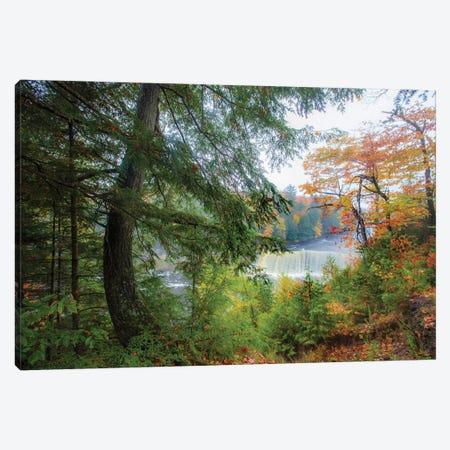 Tahquamenon Autumn II Canvas Print #KCF91} by Kevin Clifford Art Print