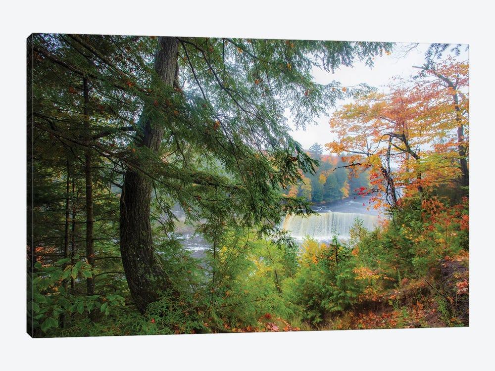 Tahquamenon Autumn II by Kevin Clifford 1-piece Canvas Artwork