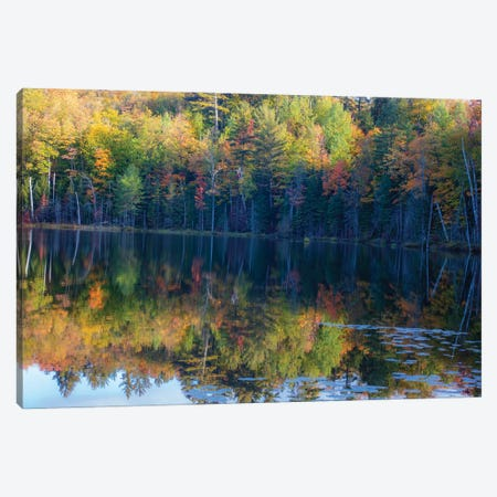 Mirror Pond Canvas Print #KCF93} by Kevin Clifford Art Print