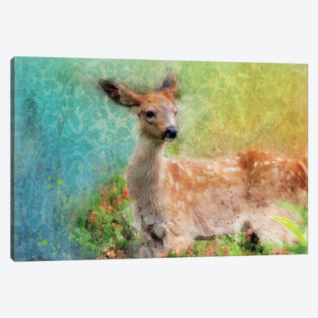Splashy Inquisitive Deer Canvas Print #KCF9} by Kevin Clifford Canvas Print