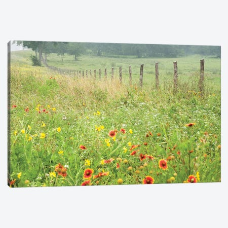 Flowers Along A Fence Canvas Print #KCO1} by Karin Connolly Canvas Art