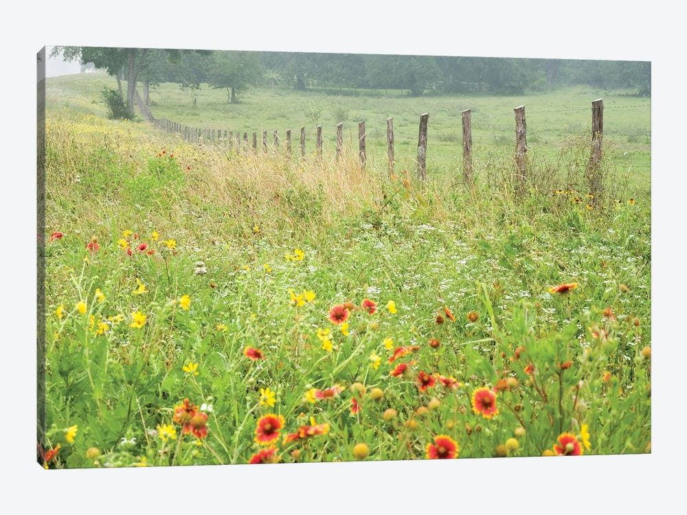 Flowers Along A Fence by Karin Connolly 1-piece Canvas Artwork