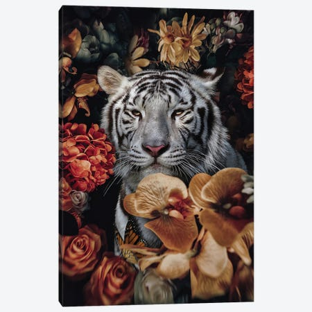 Get Used to Me Canvas Print #KCQ19} by Karen Cantuq Canvas Wall Art
