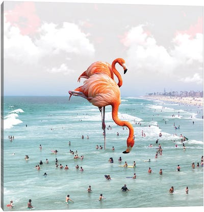 Beaching Around Canvas Art Print