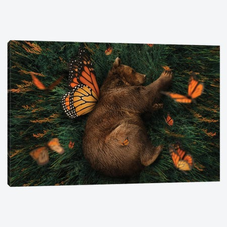 How Does One Become A Butterfly? Canvas Print #KCQ34} by Karen Cantuq Art Print