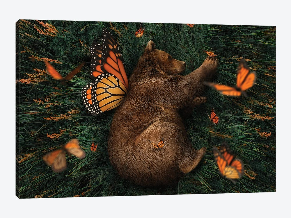 How Does One Become A Butterfly? by Karen Cantuq 1-piece Canvas Print