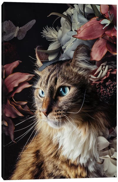 You Are the Fairest Of Them All Canvas Art Print