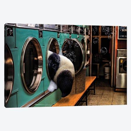 Laundry Day Canvas Print #KCQ5} by Karen Cantuq Canvas Wall Art