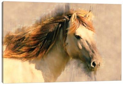 Blended Horse I Canvas Art Print
