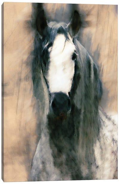Blended Horse II Canvas Art Print