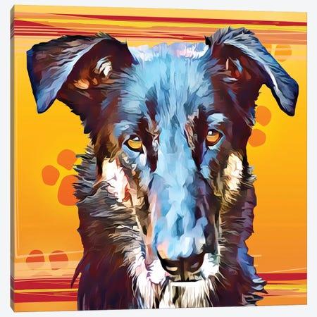 Pop Dog I Canvas Print #KCU1} by Kim Curinga Canvas Art Print