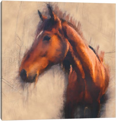 Blended Horse III Canvas Art Print