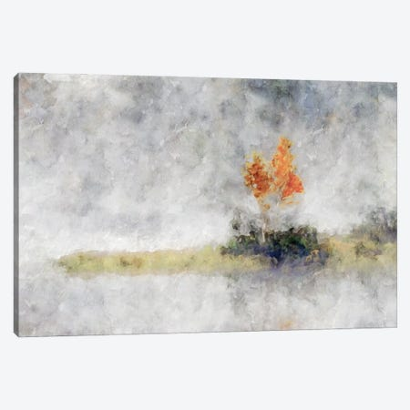 Misty Series #10 Canvas Print #KCU25} by Kim Curinga Canvas Art