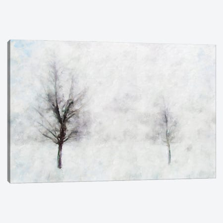 Misty Series #11 Canvas Print #KCU26} by Kim Curinga Canvas Wall Art