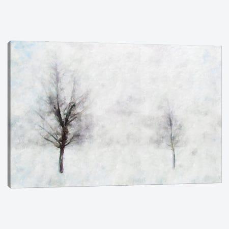 Misty Series #11 Canvas Print #KCU26} by Kim Curinga Canvas Wall Art