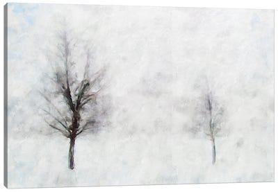 Misty Series #11 Canvas Art Print