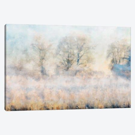 Misty Series #16 Canvas Print #KCU28} by Kim Curinga Art Print
