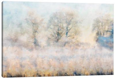 Misty Series #16 Canvas Art Print