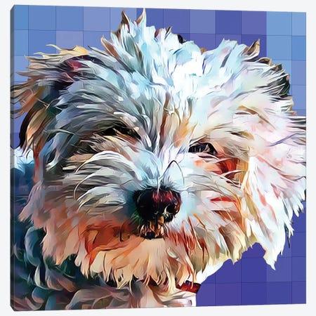Pop Dog V Canvas Print #KCU6} by Kim Curinga Canvas Art