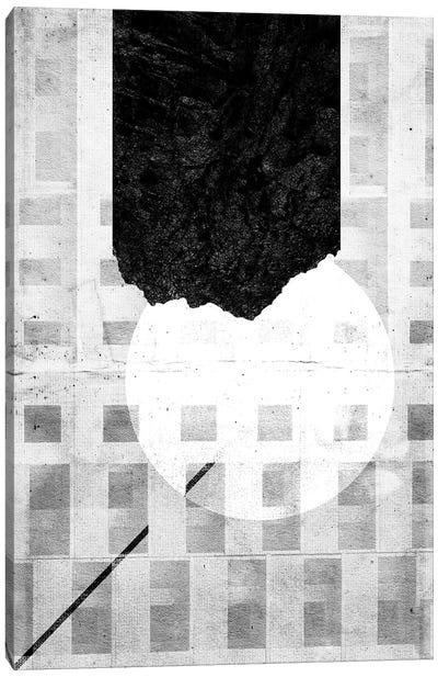 Fenestra Canvas Art Print