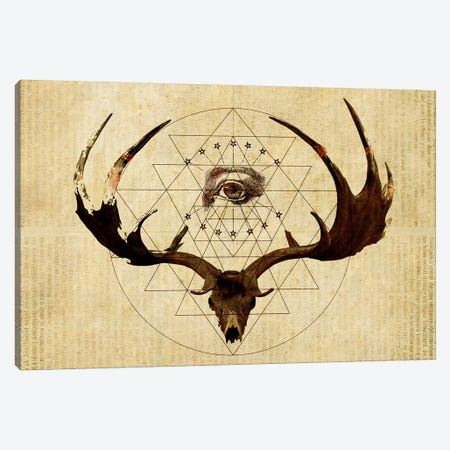 Anteocularis III Canvas Print #KDE4} by Keith Destro Canvas Wall Art