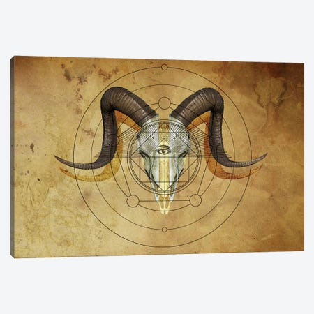 Anteocularis VII Canvas Print #KDE8} by Keith Destro Art Print