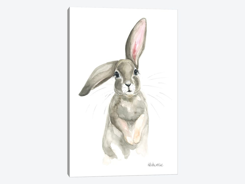 Flopsy by Kirsten Dill 1-piece Canvas Art Print