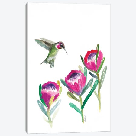 Floral Hummingbird Canvas Print #KDI12} by Kirsten Dill Canvas Art Print