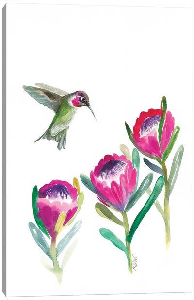 Floral Hummingbird Canvas Art Print