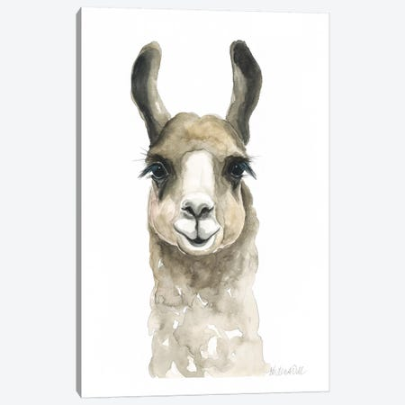 Brown Llama Canvas Print #KDI1} by Kirsten Dill Art Print