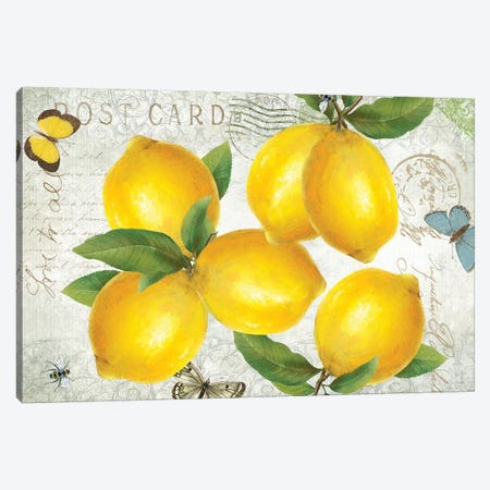 Postcard Lemons Canvas Print #KDO26} by Kelly Donovan Canvas Print