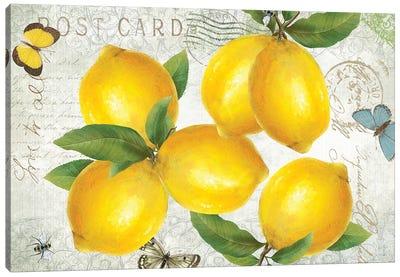 Postcard Lemons Canvas Art Print