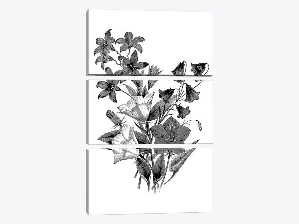 Botanical Black And White II by Kelly Donovan 3-piece Canvas Artwork