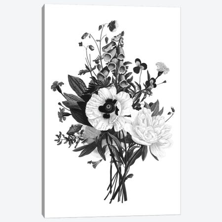 Botanical Black And White III Canvas Print #KDO9} by Kelly Donovan Canvas Art Print