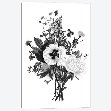 Botanical Black And White III Canvas Print #KDO9} by Kelly Donovan Canvas Art Print