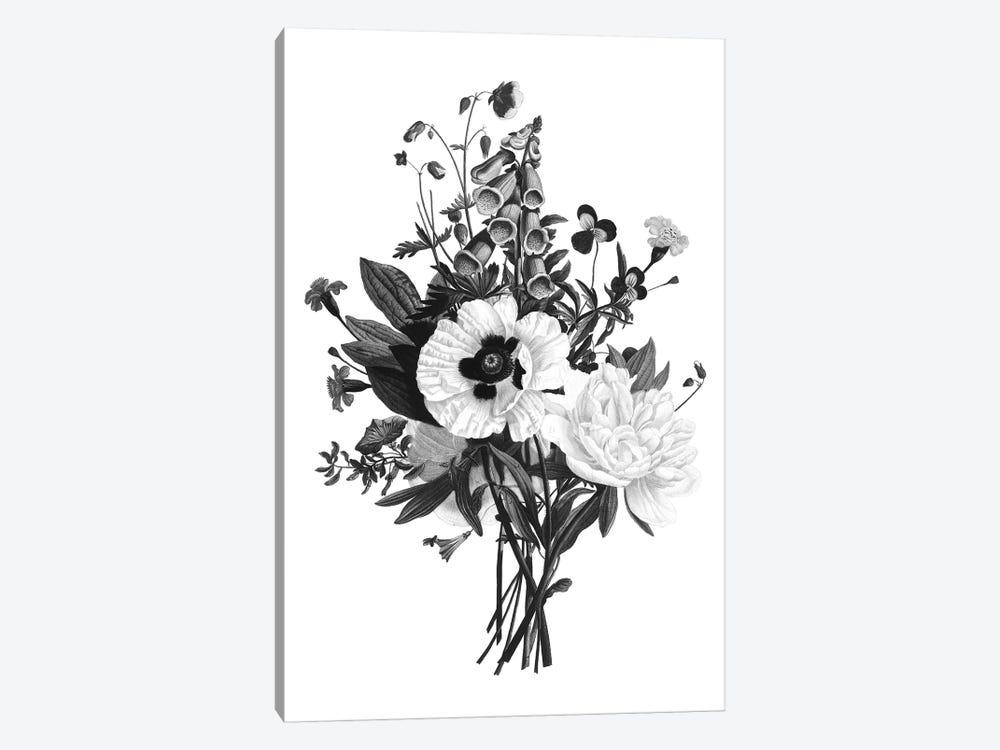 Botanical Black And White III by Kelly Donovan 1-piece Art Print