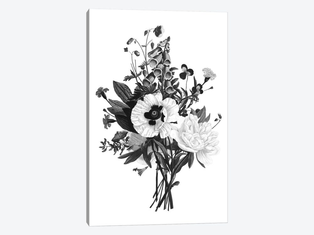 Botanical Black And White III by Kelly Donovan 1-piece Art Print