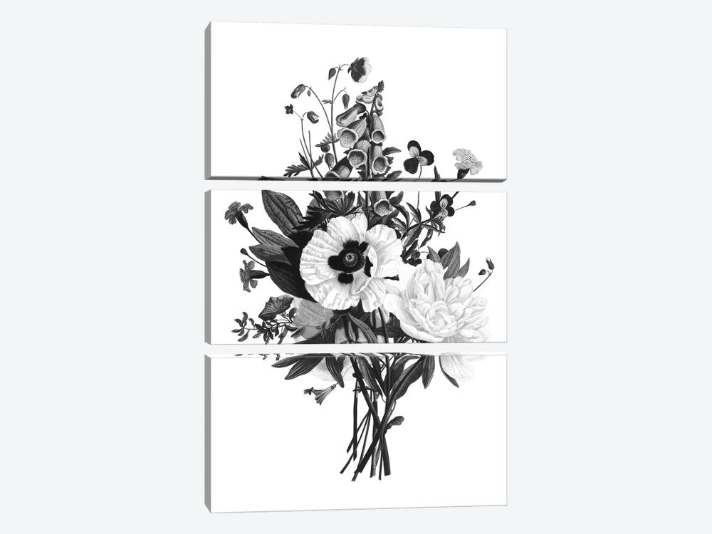 Botanical Black And White III by Kelly Donovan 3-piece Art Print