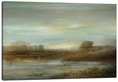 Mist On The Pond Canvas Art Print