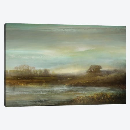Mist On The Pond Canvas Print #KEC4} by Kelly Corbin Art Print