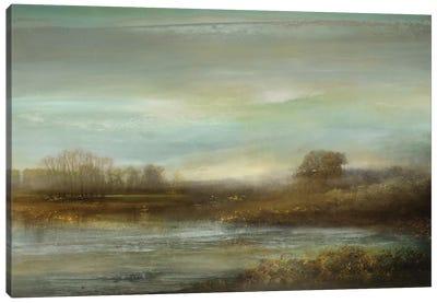Mist On The Pond Canvas Art Print