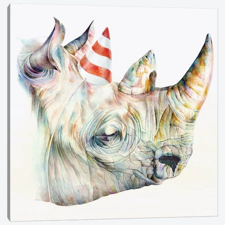 Rhino's Birthday Canvas Print #KEE11} by Brandon Keehner Canvas Art