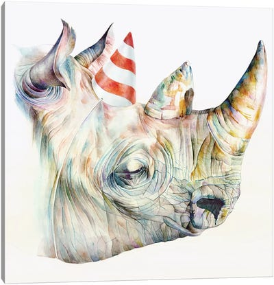 Rhino's Birthday Canvas Art Print