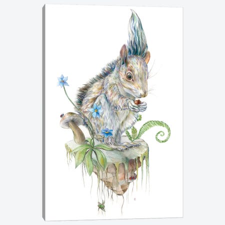 Squirrel Island Canvas Print #KEE12} by Brandon Keehner Canvas Wall Art