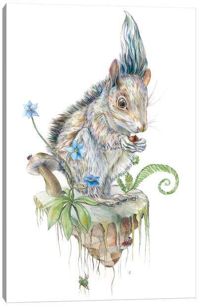 Squirrel Island Canvas Art Print
