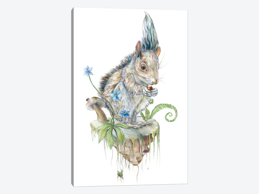 Squirrel Island by Brandon Keehner 1-piece Canvas Art Print
