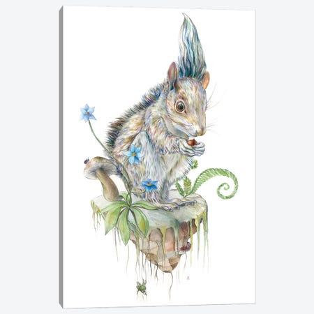 Squirrel Island Canvas Print #KEE12} by Brandon Keehner Canvas Wall Art