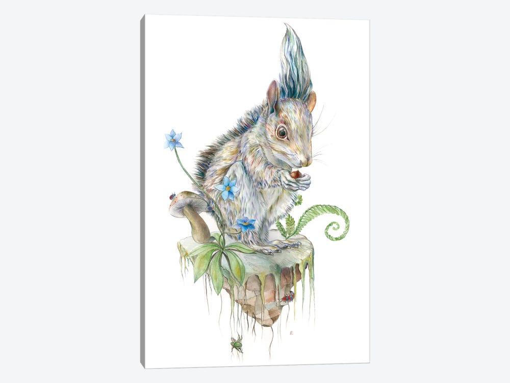Squirrel Island by Brandon Keehner 1-piece Canvas Art Print