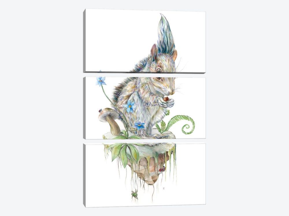 Squirrel Island by Brandon Keehner 3-piece Canvas Print